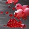 /~shared/avatars/11868040733061/avatar_1.img