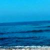 /~shared/avatars/12275762098764/avatar_1.img