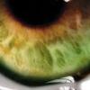 /~shared/avatars/12901253308345/avatar_1.img