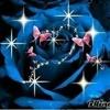 /~shared/avatars/13730315829242/avatar_1.img