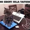 /~shared/avatars/13920482592272/avatar_1.img
