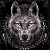/~shared/avatars/14682961538934/avatar_1.img