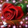 /~shared/avatars/15648445490590/avatar_1.img