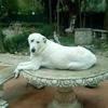 /~shared/avatars/17382734612641/avatar_1.img