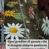 /~shared/avatars/19624290564130/avatar_1.img