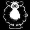 /~shared/avatars/2153987834374/avatar_1.img
