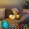 /~shared/avatars/24100913253059/avatar_1.img