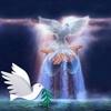 /~shared/avatars/26660147222730/avatar_1.img