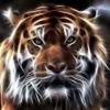 /~shared/avatars/30519742242940/avatar_1.img