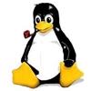 /~shared/avatars/30653776280655/avatar_1.img