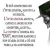/~shared/avatars/33205317382101/avatar_1.img
