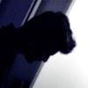 /~shared/avatars/36131706848314/avatar_1.img