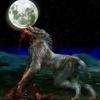 /~shared/avatars/36272520941685/avatar_1.img