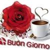 /~shared/avatars/3868610311115/avatar_1.img