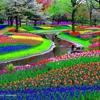 /~shared/avatars/39634998514212/avatar_1.img