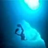 /~shared/avatars/40442773536064/avatar_1.img