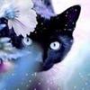 /~shared/avatars/40865090762197/avatar_1.img