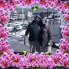 /~shared/avatars/42749418593929/avatar_1.img