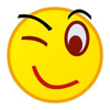/~shared/avatars/43044749589680/avatar_1.img