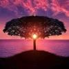 /~shared/avatars/44272496443696/avatar_1.img
