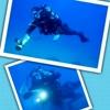 /~shared/avatars/45887216677434/avatar_1.img