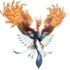 /~shared/avatars/46287419490696/avatar_1.img