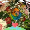 /~shared/avatars/46849896131400/avatar_1.img