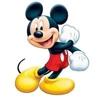 /~shared/avatars/49923652118331/avatar_1.img