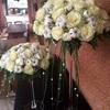 /~shared/avatars/50944652784552/avatar_1.img