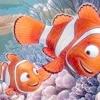 /~shared/avatars/51033690867150/avatar_1.img