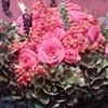 /~shared/avatars/51367735206725/avatar_1.img