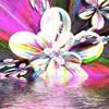 /~shared/avatars/51993234055616/avatar_1.img