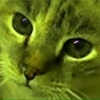 /~shared/avatars/52894491804461/avatar_1.img