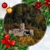 /~shared/avatars/54909136912769/avatar_1.img