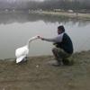 /~shared/avatars/58091762726862/avatar_1.img