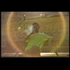 /~shared/avatars/60106575752724/avatar_1.img