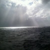 /~shared/avatars/60605464455979/avatar_1.img