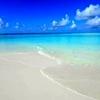 /~shared/avatars/63857902021247/avatar_1.img