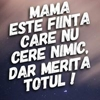 /~shared/avatars/63882227471082/avatar_1.img