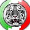 /~shared/avatars/64321703217279/avatar_1.img