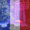 /~shared/avatars/64944578340289/avatar_1.img
