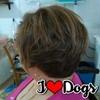 /~shared/avatars/65783604567451/avatar_1.img