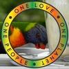 /~shared/avatars/66145232788906/avatar_1.img