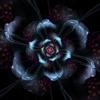 /~shared/avatars/69299708492624/avatar_1.img