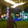 /~shared/avatars/7345166998066/avatar_1.img