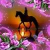 /~shared/avatars/7591703978899/avatar_1.img
