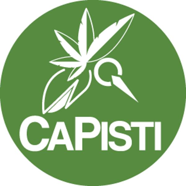Capisti