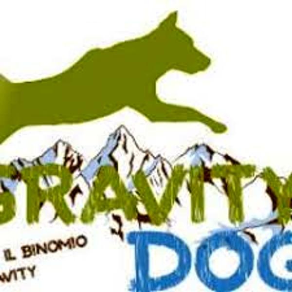 La bottega del ciapinabò con insegna gravity dogs